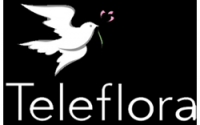 Teleflora Corporate Office