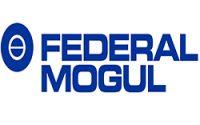 Federal Mogul Corporate Office