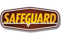 Safeguard Security Corporate Office